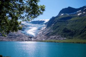 Mit dem Hund nach Norwegen verreisen – was ist zu beachten?