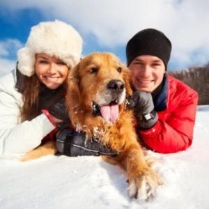 Sport im Winterurlaub mit Hund?