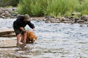 Anglerurlaub mit Hund – Natur pur erleben!