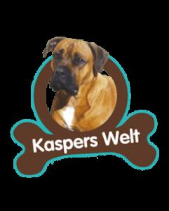 Kaspers Reiseführer – Ein besonderes Valentins-Geschenk
