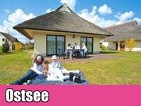 Urlaub mit Hund Ferienhaus Ostsee
