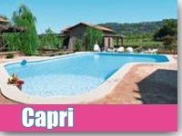 Insel Capri mit Hund