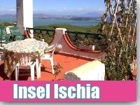 Ischia Ferien mit Hund