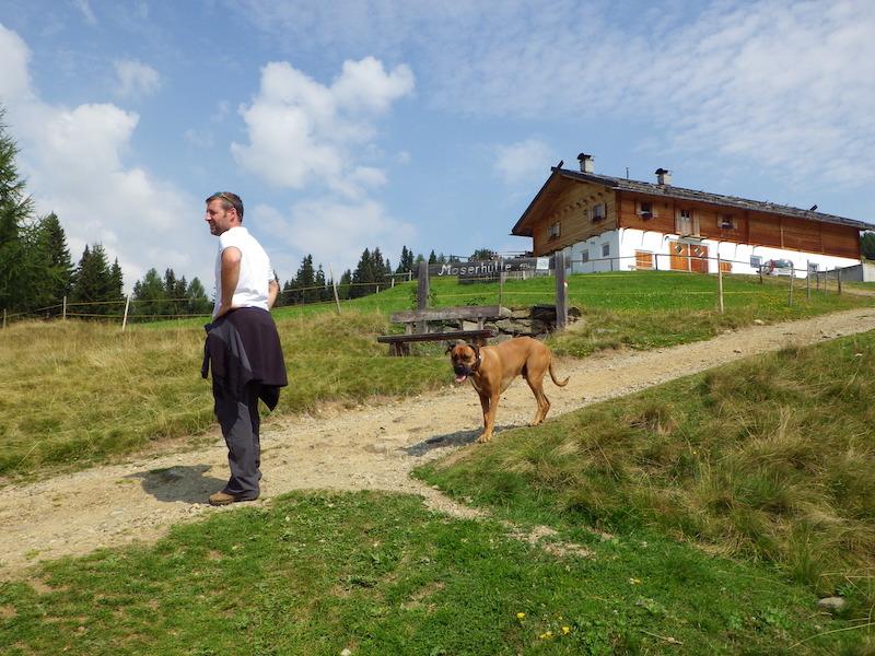 Wandern mit Hund Bayern