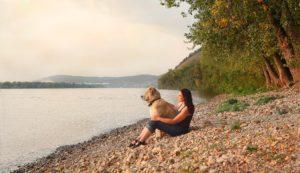 Flussreisen mit Hund