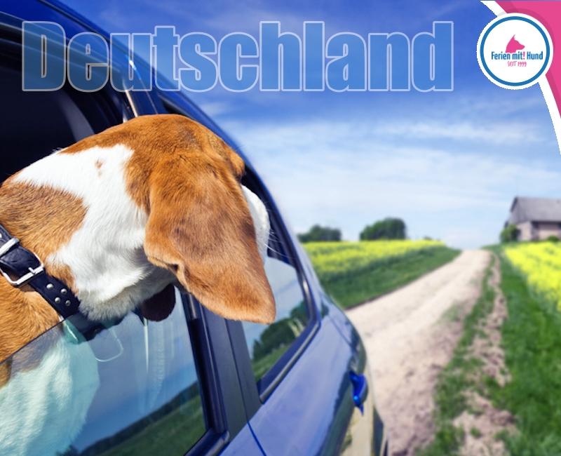Reisethema - ibt-pep.de